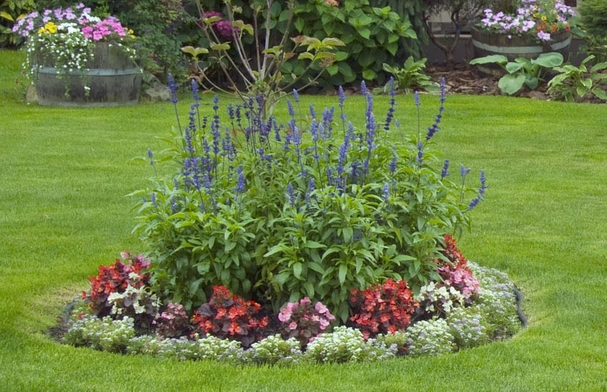 landscaping and design services