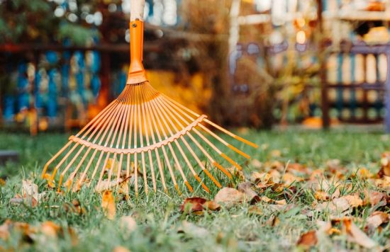 residential services - landscape maintenance