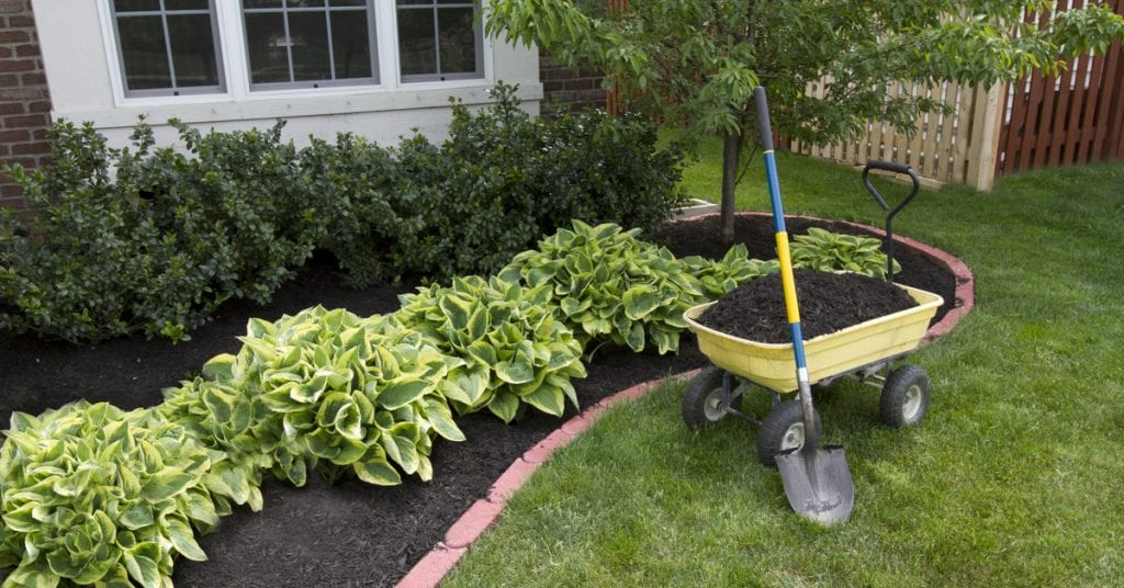 Spring Has Sprung! Here's Your Landscape Maintenance Checklist