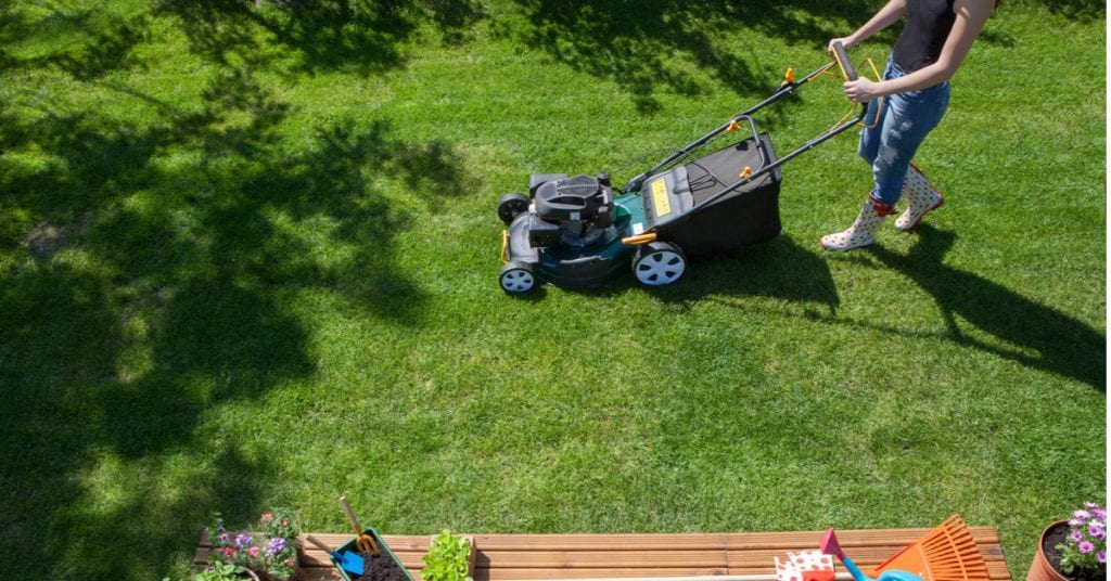 6 Benefits of Frequent Mowing and Shorter Grass