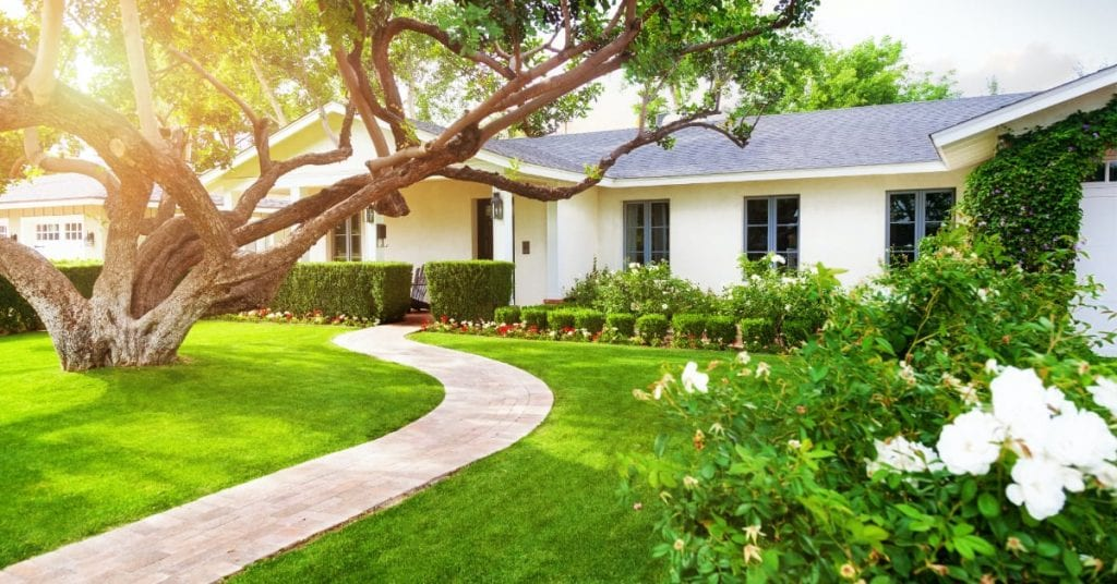 Landscape Design and Maintenance, What To Look For