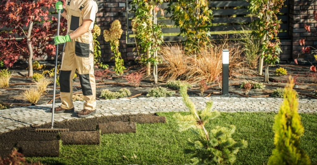 5 Tips; Sod Preparation and Installation