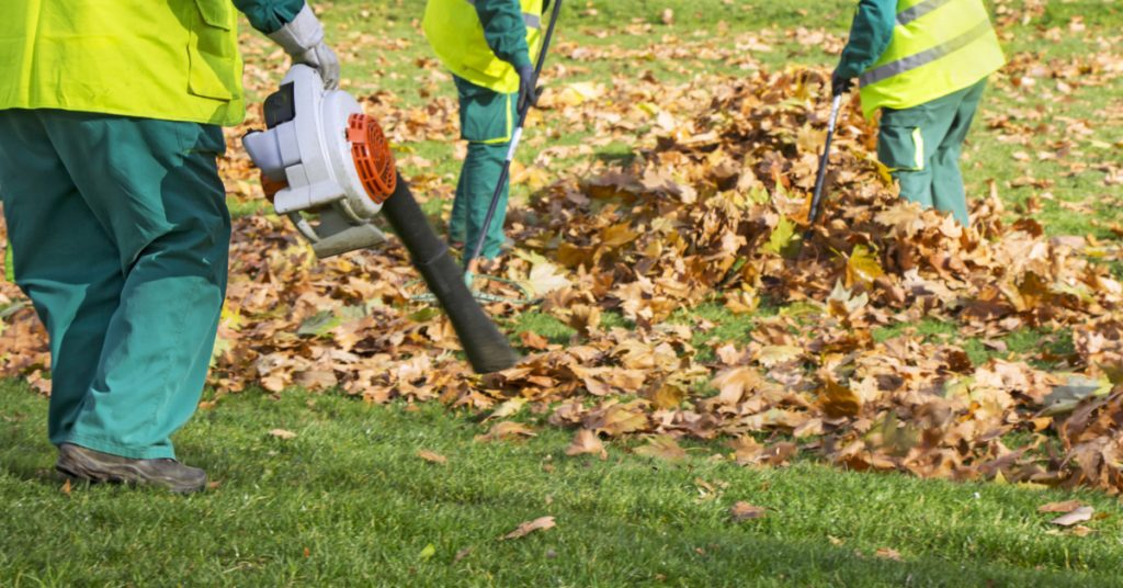 Spring and Fall Yard Clean Up Landscaping Services